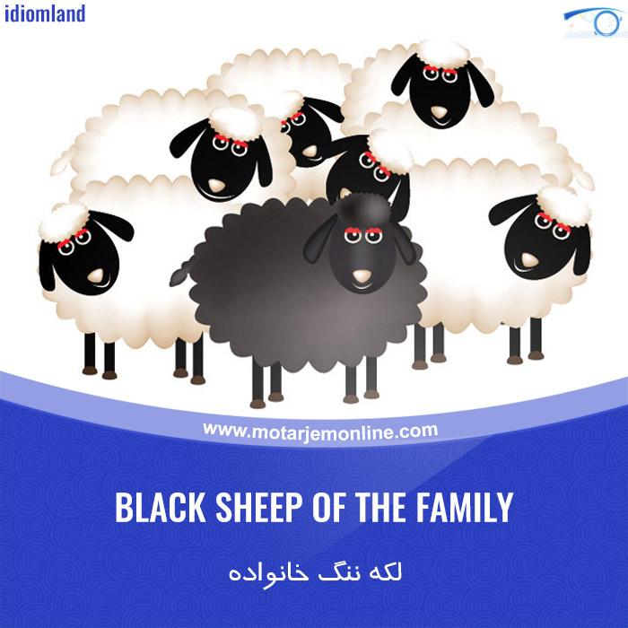 Black Sheep of the Family لکه ننگ خانواده