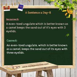 A Sentence a Day 8