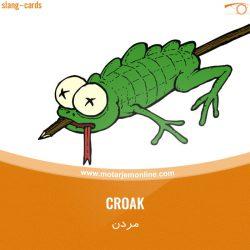 croak…مردن